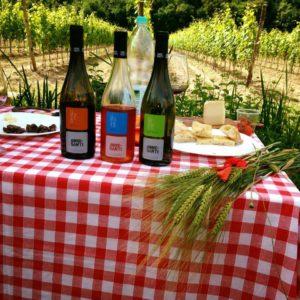 Vinsmaking i Umbria